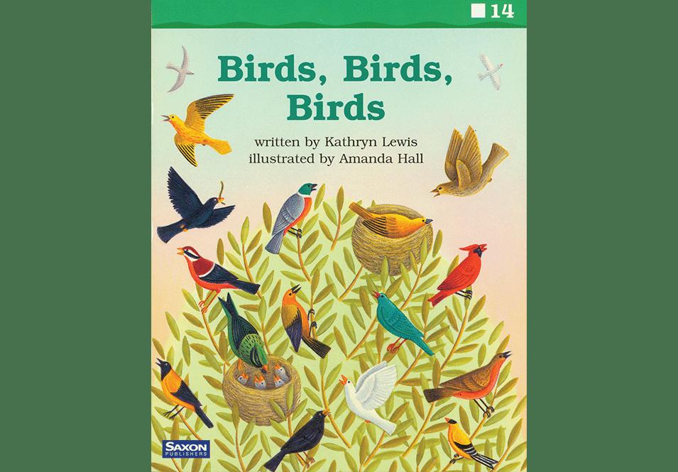 'Birds, Birds Birds book cover'