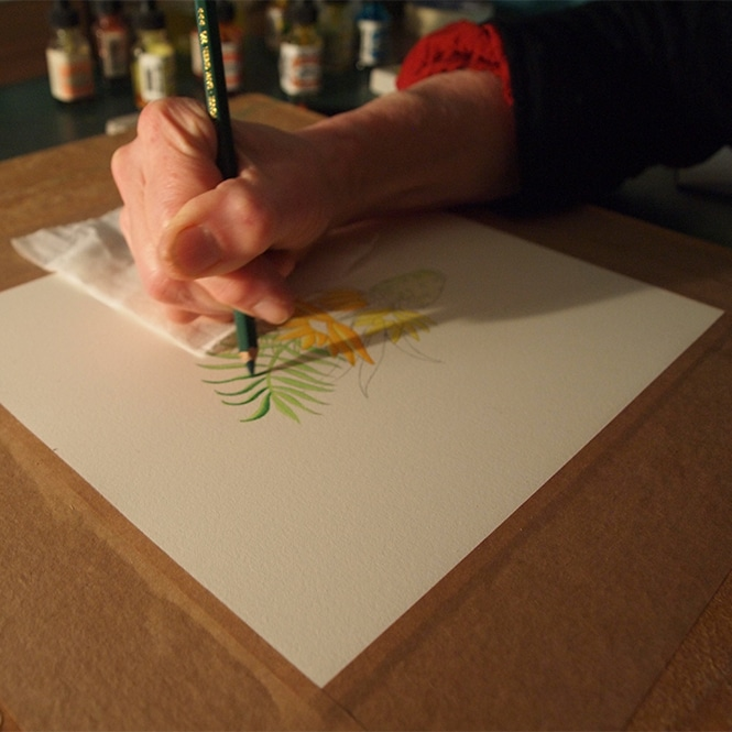 Illustration Methods. Photography Clare Sinclair