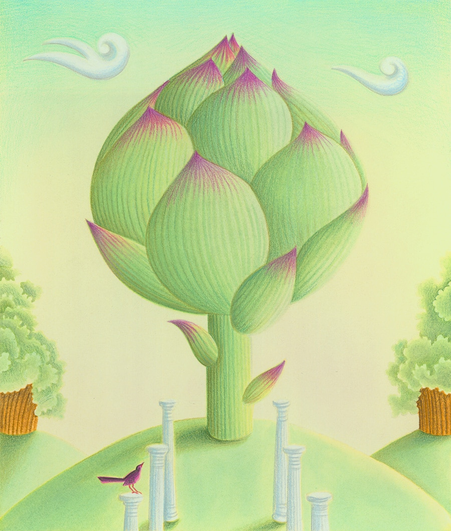 Hand Drawn Illustration Library. Illustration 9 'The Wondrous Artichoke' (Pixel dimensions available w2516 x h2957)