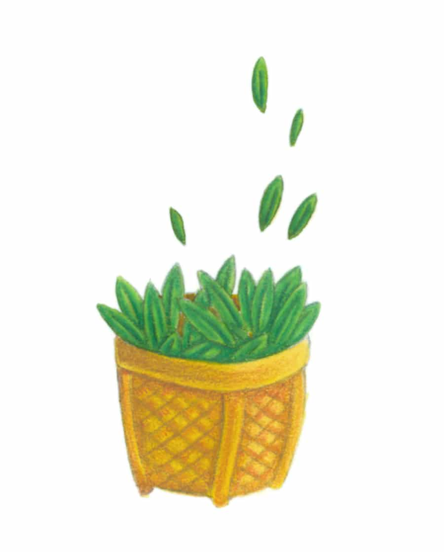 Illustration 12 'The Basket of Herbs' (Pixel dimensions available w370 x h741)