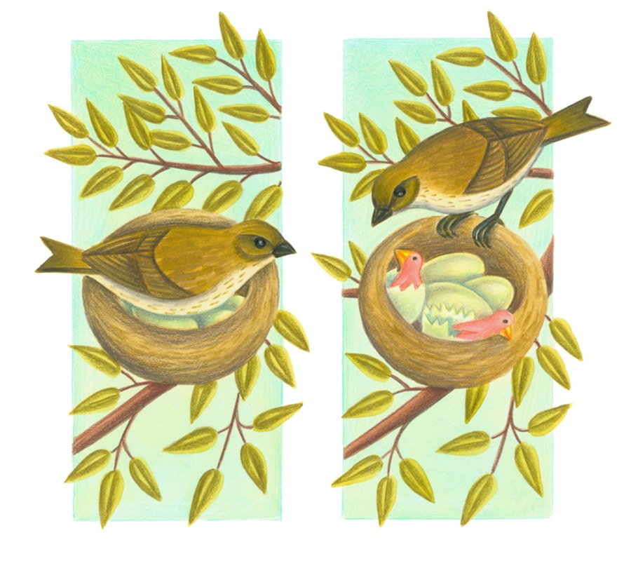 Illustration 7 'One day, the bird's chicks crack their eggs'
