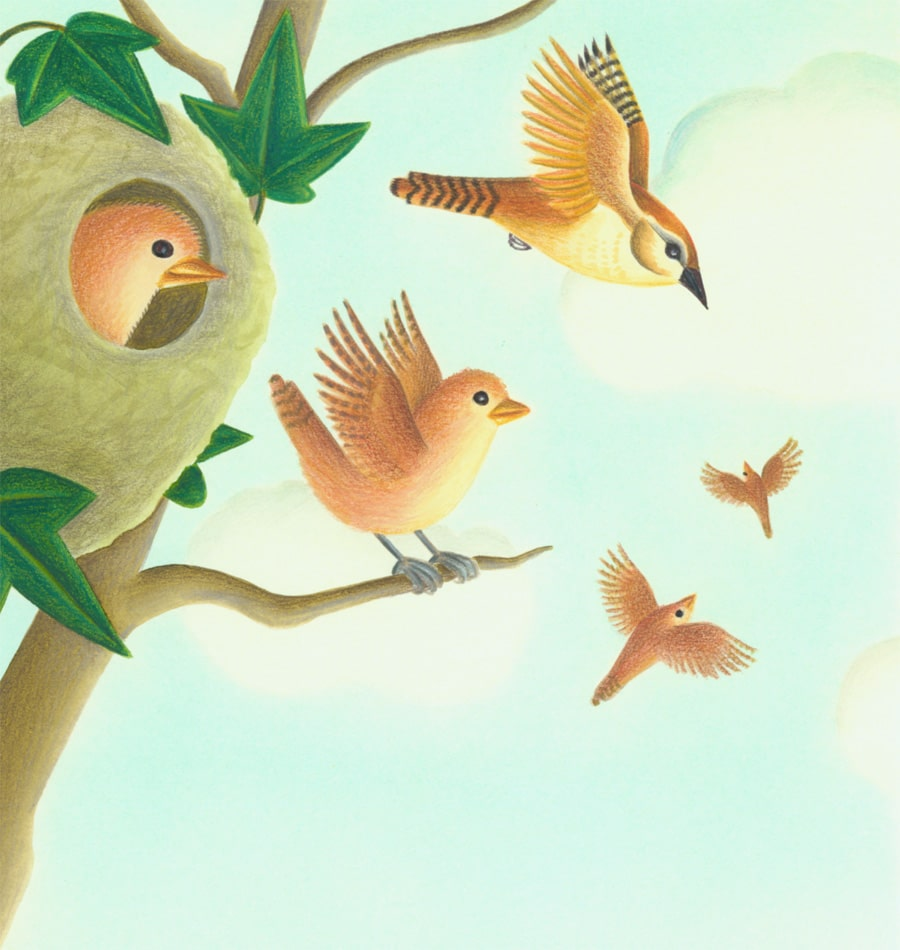 Illustration 8 'It is the fledgling's turn to fly'