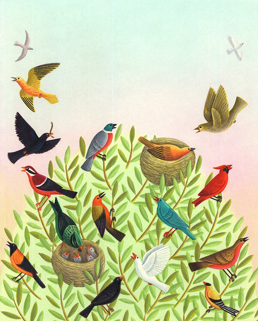 Illustration 9 'Cover, many birds in a tree'