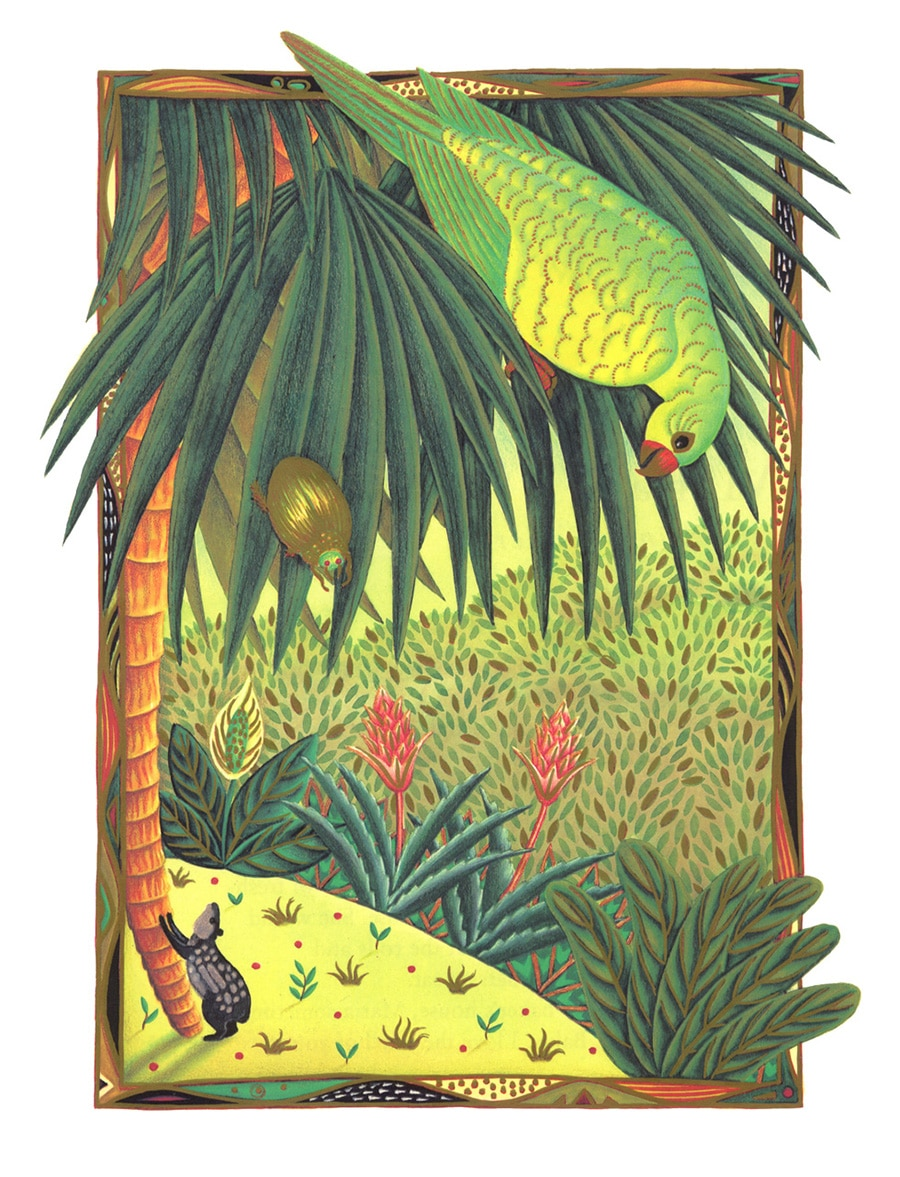 Illustrations for Children's Picture Books 15 PARROT (Pixel dimensions available w2198 x h2887)