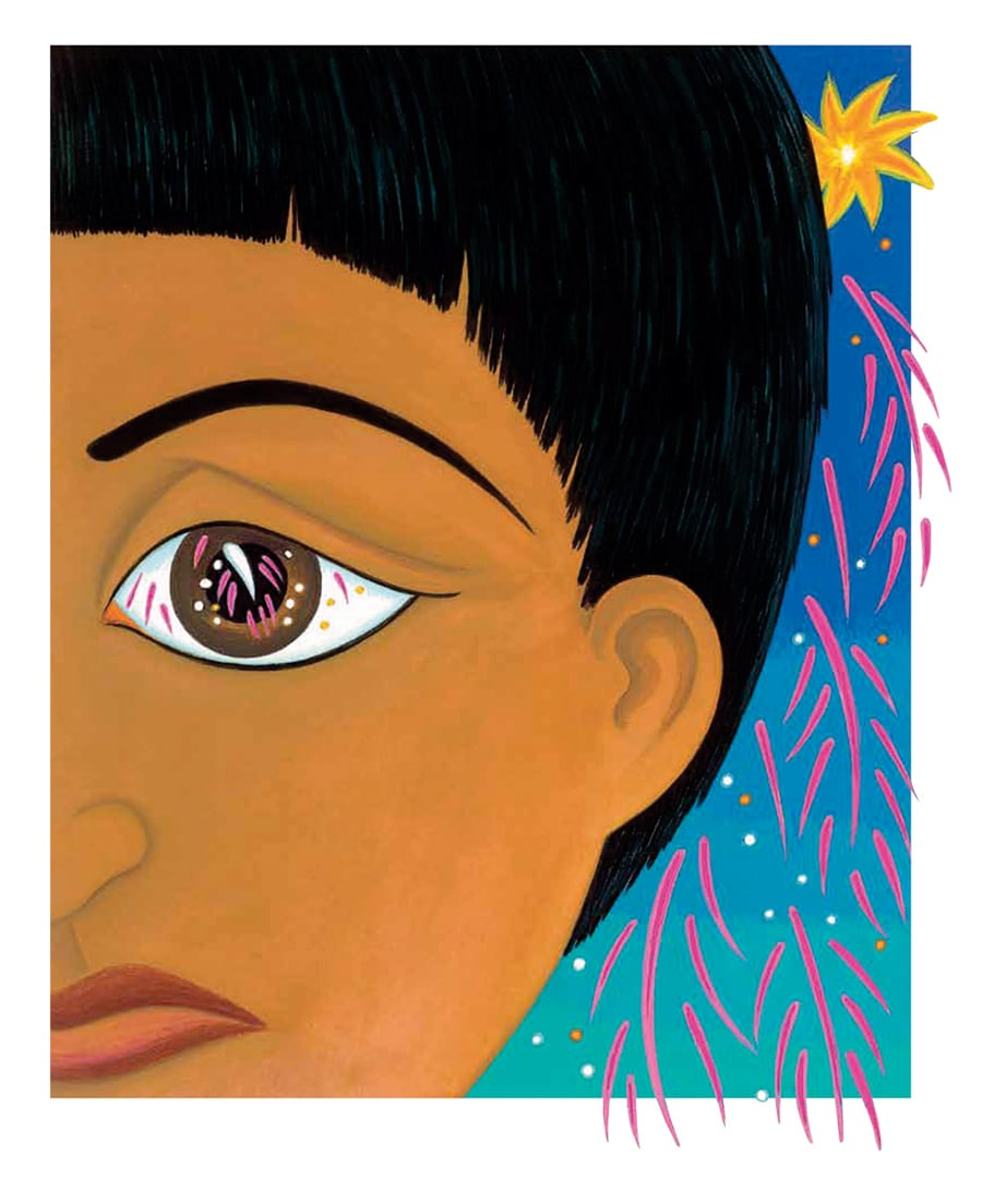 In Andals House Gallery. Illustration 6 'Kumar watched the fireworks fall to the ground like brightly coloured tears'