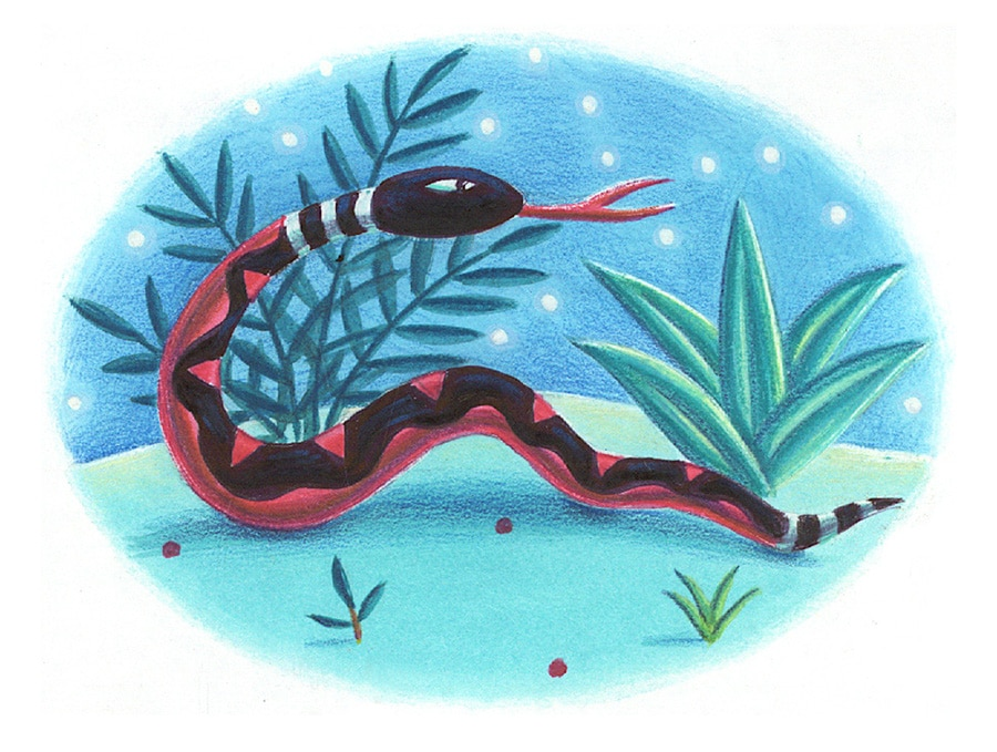 Lions Precious Gift Gallery. Illustration 2 'The Snake'