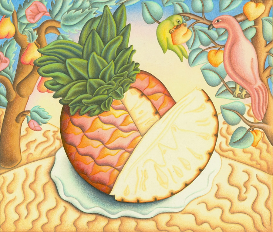Hand Drawn Food Illustrations. Illustration 3 'The Tropical Pineapple' (Pixel dimensions available w2934 x h2490)
