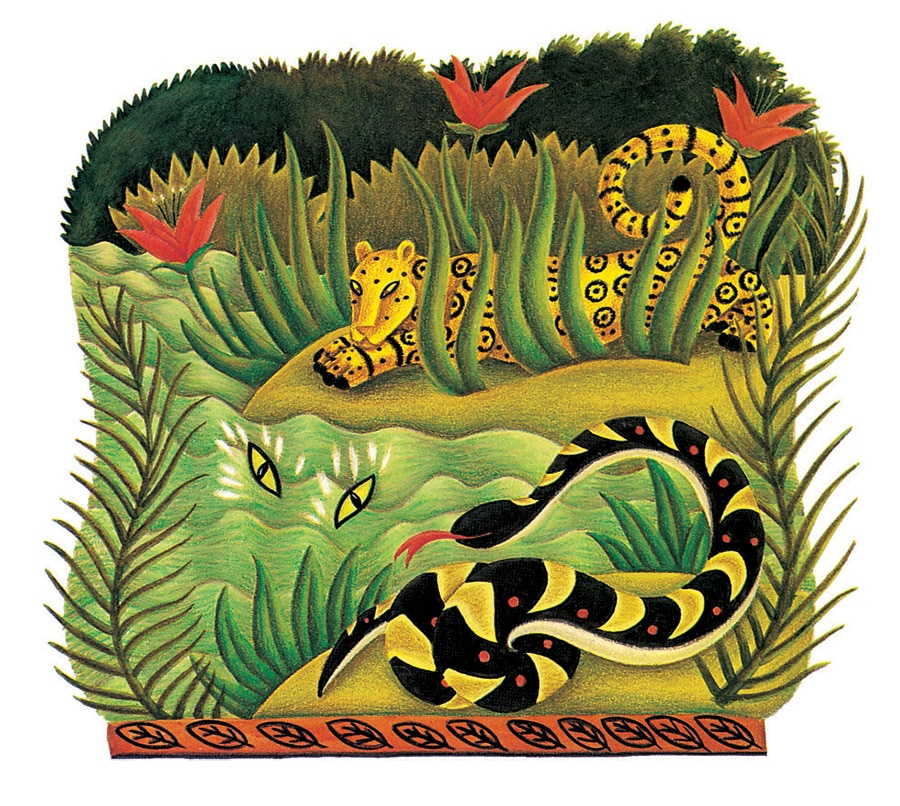 Illustration 9 from Animal Tales. 'Magic in the Rain Forest'