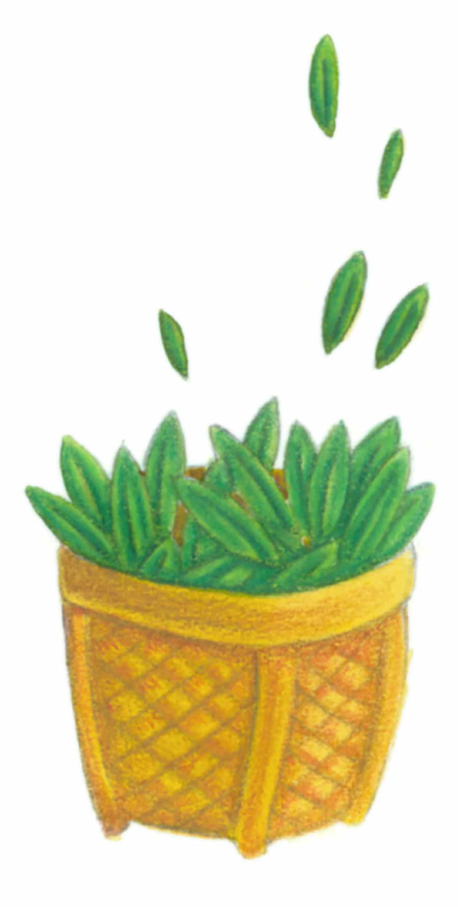 Illustration 10 'The Basket of Herbs' (Pixel dimensions available w370 x h741)