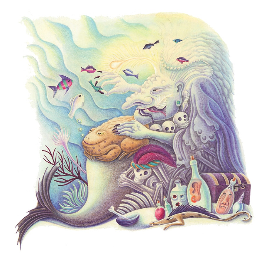 The Barefoot Stories from the Sea Gallery. Illustration 6 'The Sea Witch' (Pixel dimensions available w2064 x h2071)