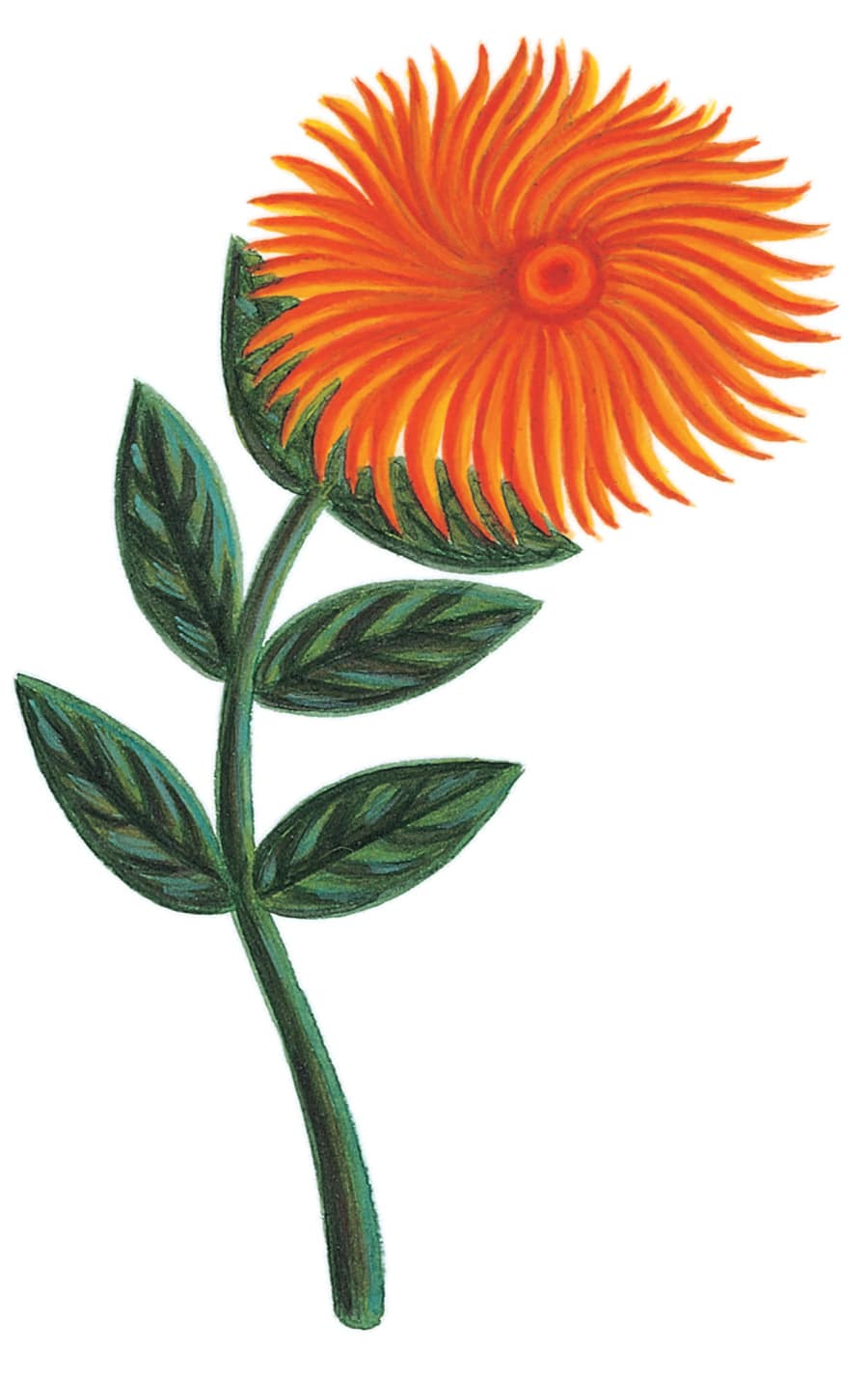 Illustration 8 'A flower opens its heart to Henri Rousseau' (Pixel dimensions available w744 x h1163)