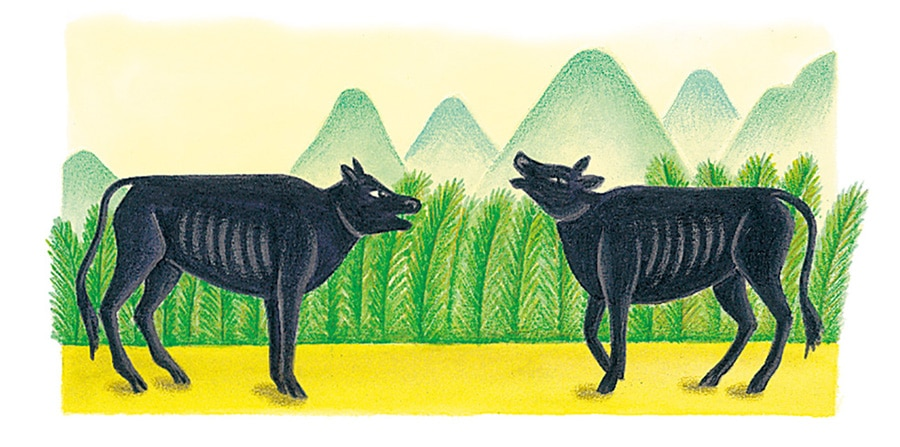 Illustration 61 'Cattle grew skinny for lack of food' (Pixel dimensions available w780 x h392)