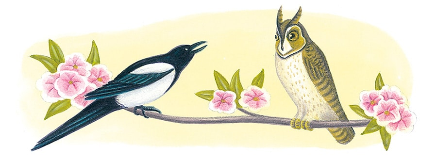 Hand Drawn Illustration Library. Illustration 4 'The Magpie and The Owl' (Pixel dimensions available w1310 x h481)